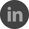 The LinkedIn icon, allowing you to make professional connections with Ragtrades